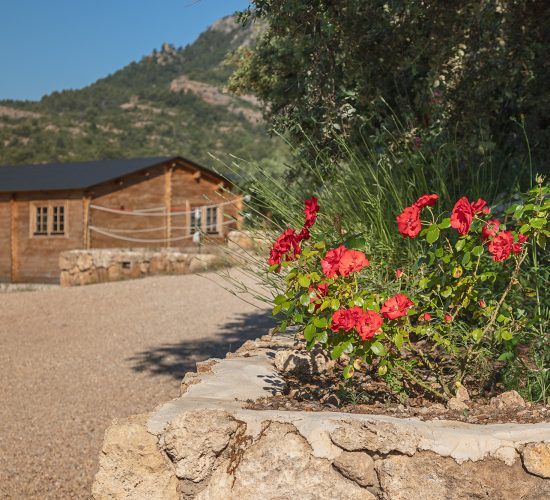 Beceite Camping - Bungalow 4-6 personas