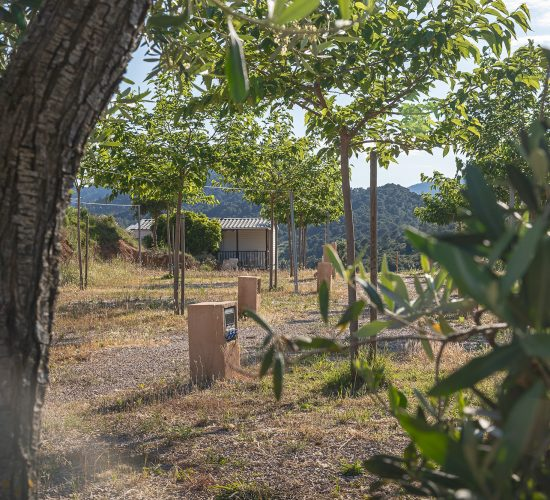 Beceite Camping - Parcela